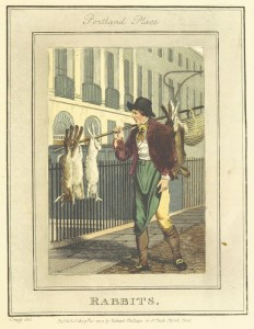 Phillips(1804)_p645_-_Portland_Place_-_Rabbits